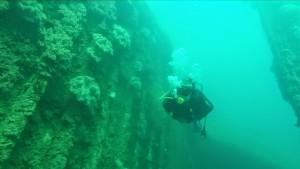 Karimunjawa diving