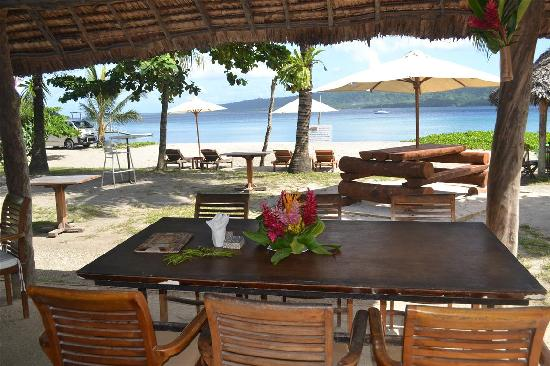 Beach bar vanuatu