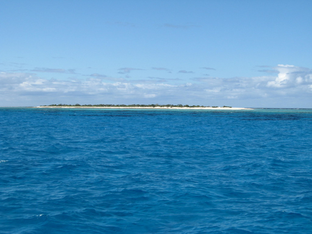 Chesterfield reef